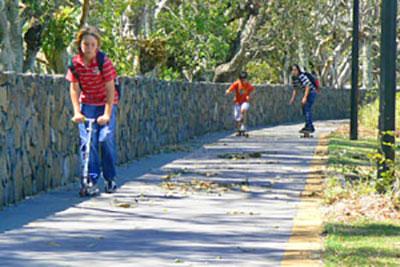 Lismore Bicycle Study